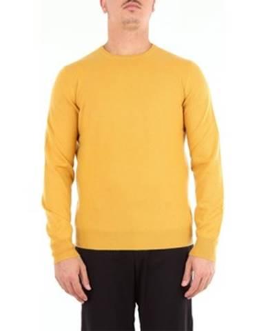 Žlté tričko Barba Napoli